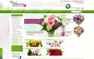 Bluvesa Webseiten Screenshot
