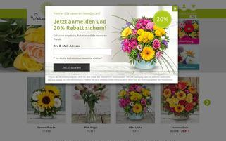 Valentins Webseiten Screenshot