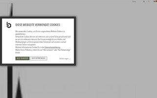 BEYOND LIMITS Webseiten Screenshot