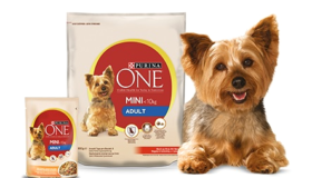 Purina ONE® MINI gratis testen